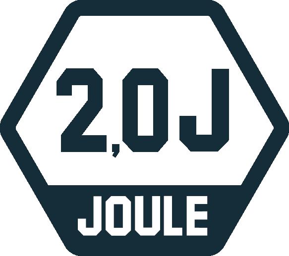 2,0 Joule