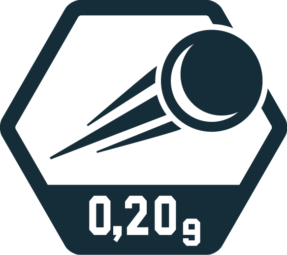 0,20g