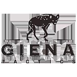 Giena Tactics